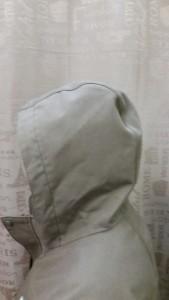 hood_before